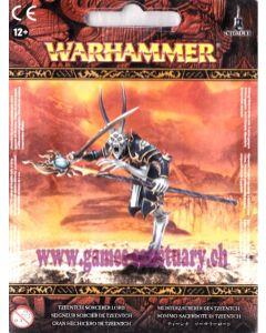 Warhammer (JdB) - Guerriers du Chaos - Seigneur Sorcier de Tzeentch