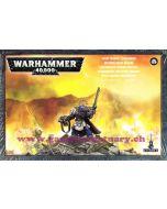 Warhammer 40000 (JdF) - Space Marines - Officier